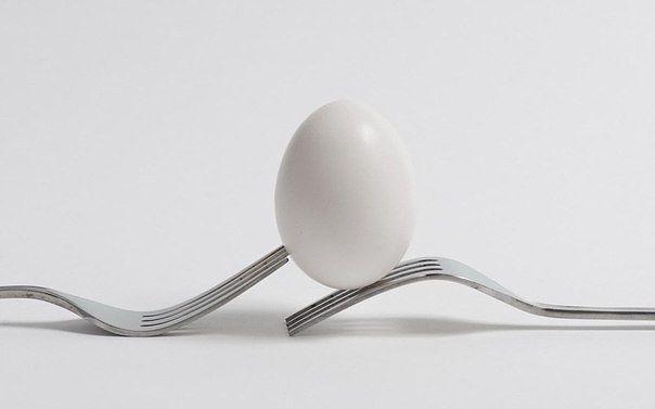 Как выбрать яйца в магазине: вся правда о яйцах
