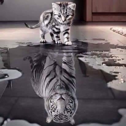 Когда веришь в себя...