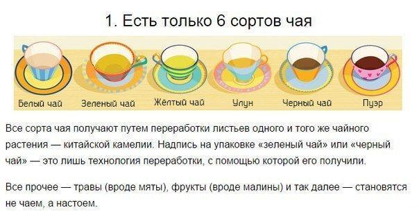 Чайной науки пост