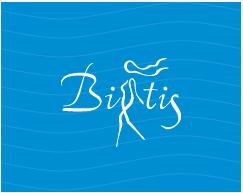 Сбор заказов. Распродажа. Женская одежда Bitis-12 сочетающая в себе отличный дизайн, качество