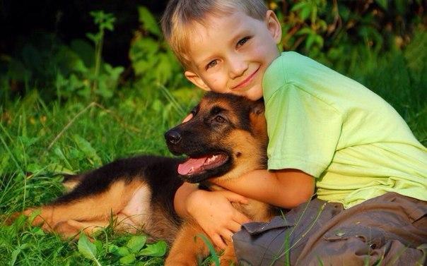 6 предрассудков о воспитании мальчика