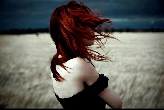 Любая женщина -- сумасшедшая птица. Проблема в том, что большинство женщин стремятся научиться не летать, а только вить гнёзда...