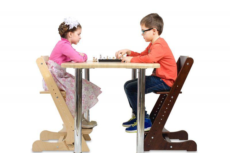 Сбор заказов. Конёк-горбунёк - растущий стульчик для детей от 6 месяцев до института. Здоровая осанка с детства. Сбор 1
