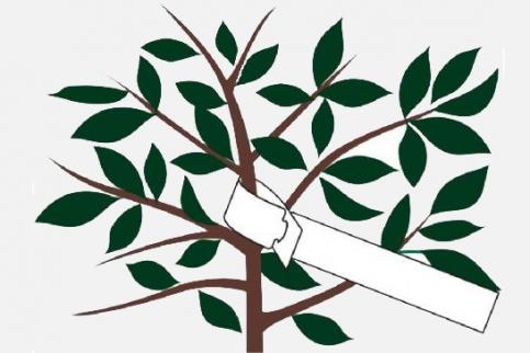 Сбор заказов. Нужно любому дачнику и садоводу. Все для маркировки растений. Бирки-петельки и промышленные несмываемые маркеры