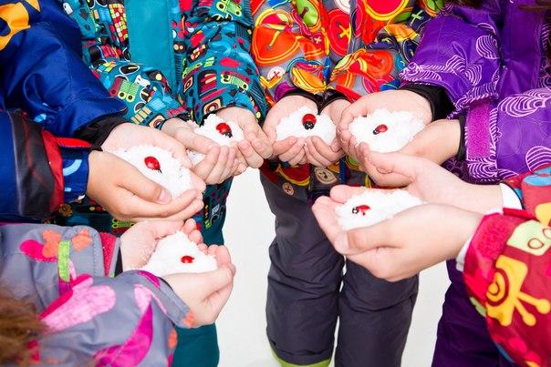 Распродажа только 10 дней! Верхняя одежда PicCo итальянский дизайн, канадские технологии. Предзаказ зимы 16-17. -5