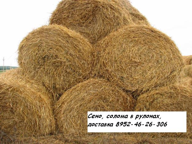 Продаём сено, солому в рулонах по 200 кг