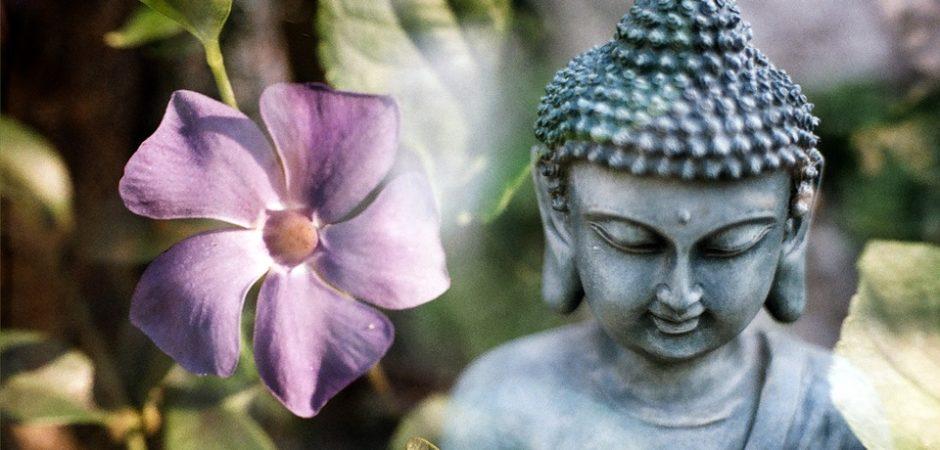 Практика сострадания и доброты