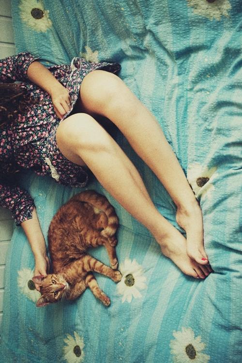 Почему женщины любят разговаривать с кошками так, словно те понимают, что им говорят?