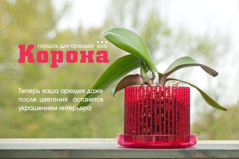 Сбор заказов. Чудесные горшки для орхидей, яркие кашпо. И много других керамических и пластиковых горшков и горшочков.Сбор - 1.