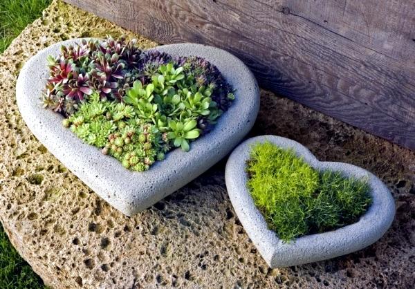 Огромный выбор многолетников, хвойных, декоративных и плодовых растений в контейнерах из питомника Агрофирмы Пousk-3