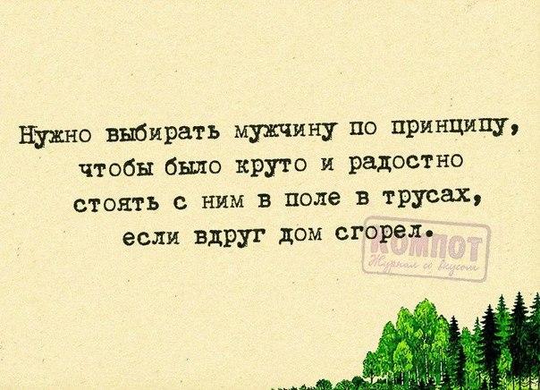 Фраза дня)