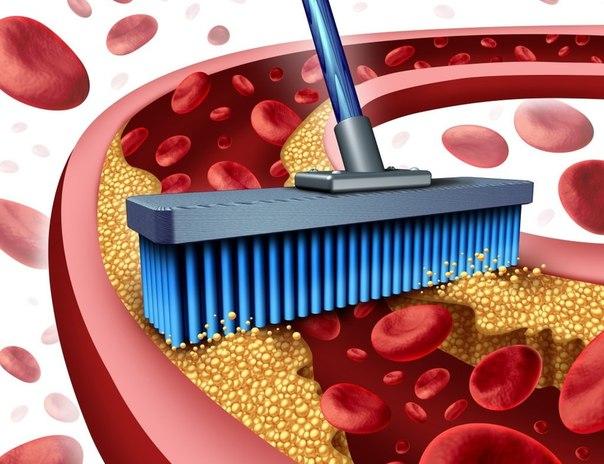 11 продуктов, которые прочистят артерии и защитят сердце