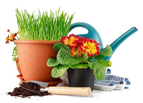 Товары для сада и огорода! Инвентарь, садовый декор, перчатки и дождевики, кашпо для растений, мышеловки.