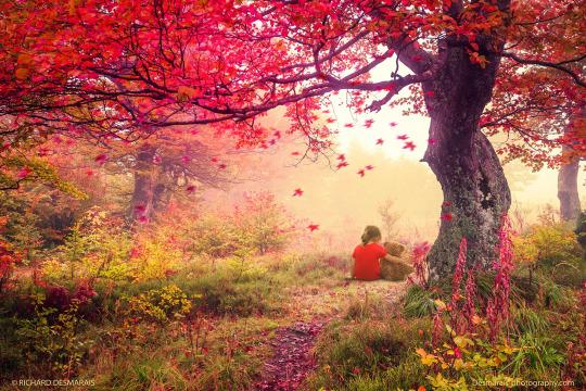 Дружба одного разумного человека дороже дружбы всех неразумных. (с) Демокрит.