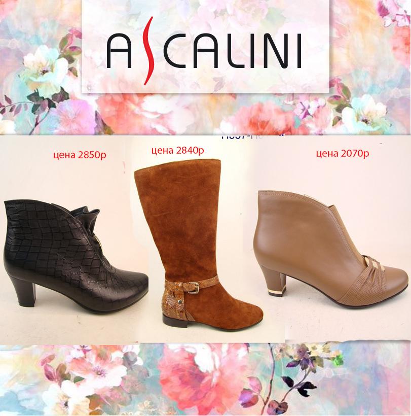 Наконец то распродажа!!! Ascalini - Обувь для полного счастья