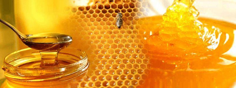 Сбор заказов. Мёд с пасеки в Тамбовской области. 335рублей за кг уже с оргсбором. 1500рублей 3-хлитровая банка.