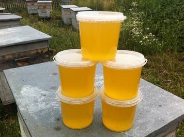Сбор заказов. Со своей пасеки! Мёд, забрус, гранулированная перга, воск, прополисные коврики. Исключительно натурально и безумно полезно. 3-16
