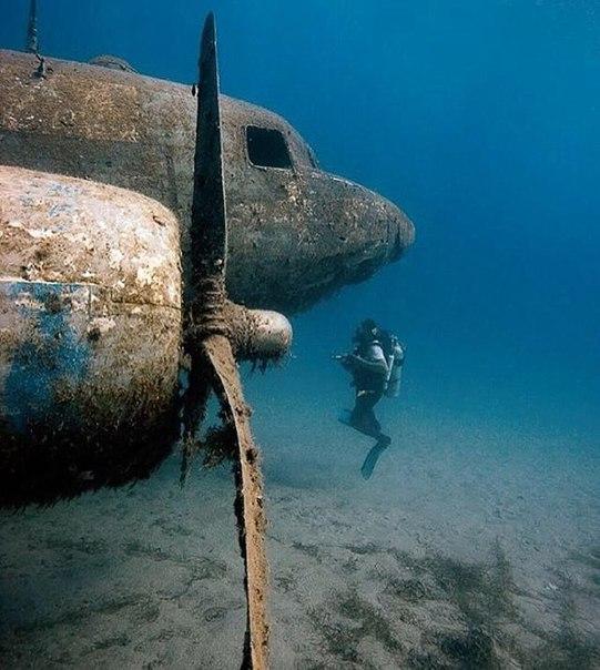 Этот прекрасный и неизведанный подводный мир.