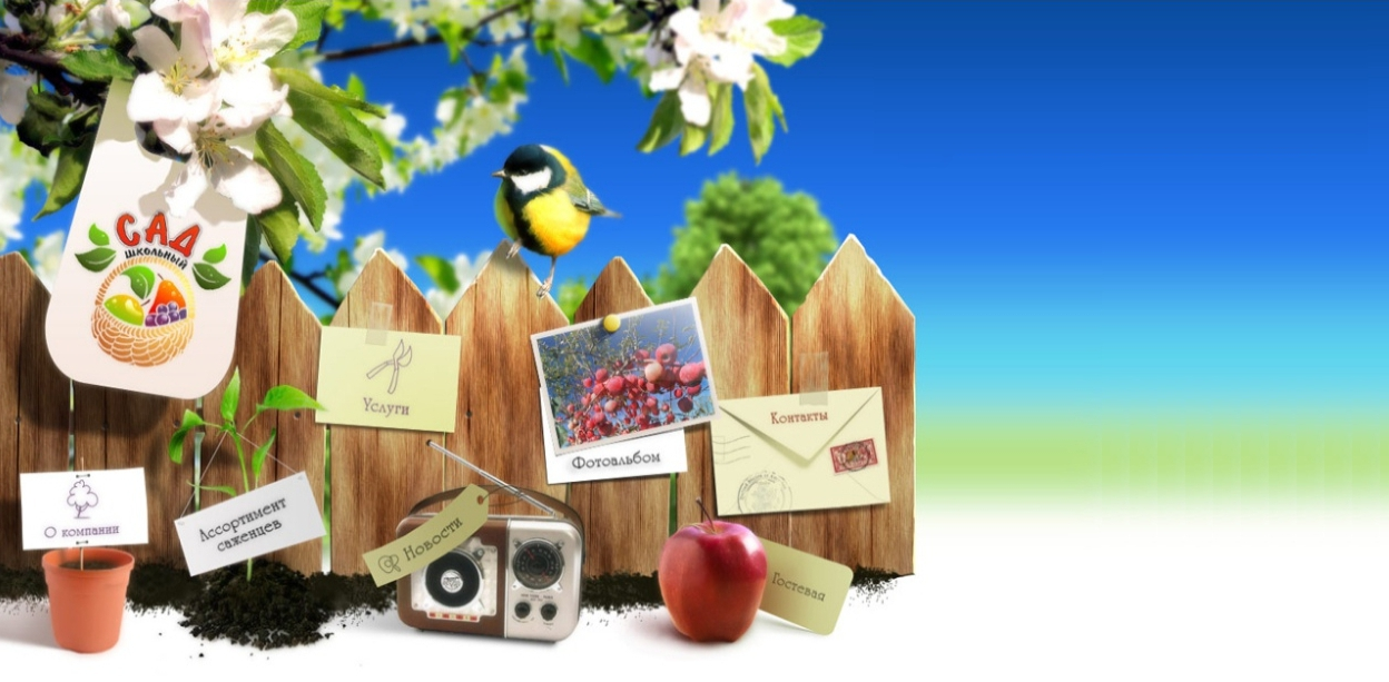 Сверка. Школьный сад - большой выбор районированных сортов, здоровые, крепкие саженцы плодовых деревьев, ягодных и декоративных культур. Август-сентябрь.
