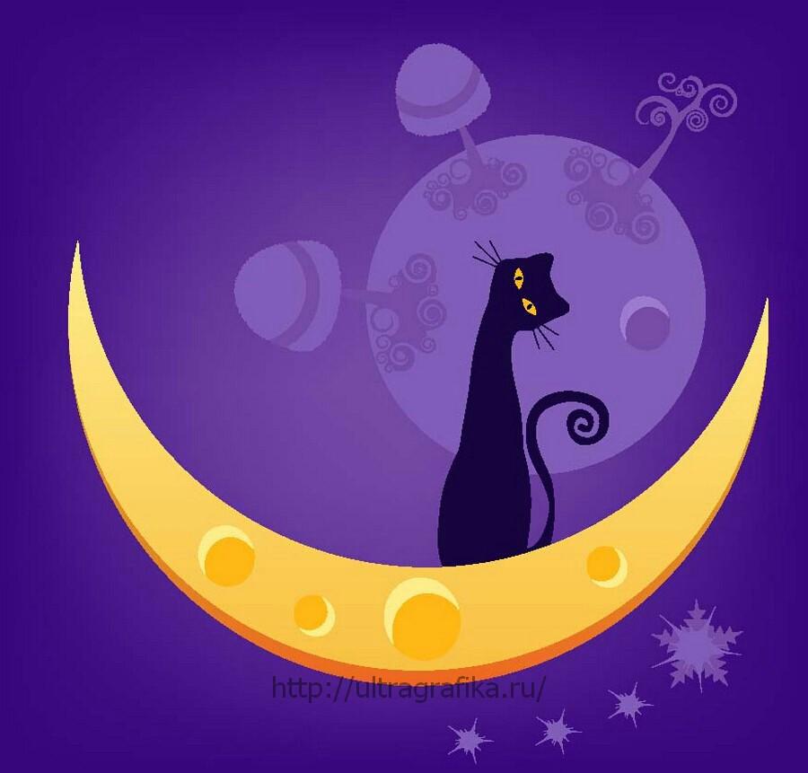 Сладких снов, любимые