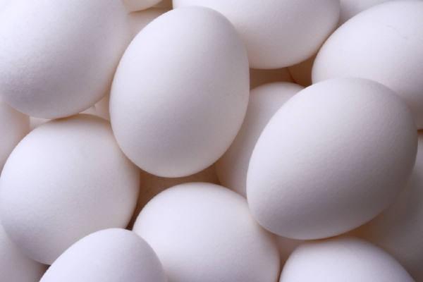 Сбор заказов. Яйцо куриное отборное от одной из лучшей птицефабрики России. Выкуп-5