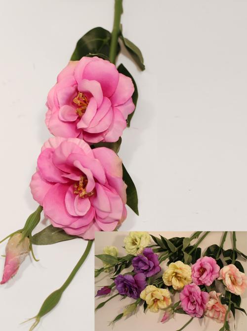 Оформление интерьера изысканными и красивыми растениями, деревьями! Красивейшие новинки!!! - 15