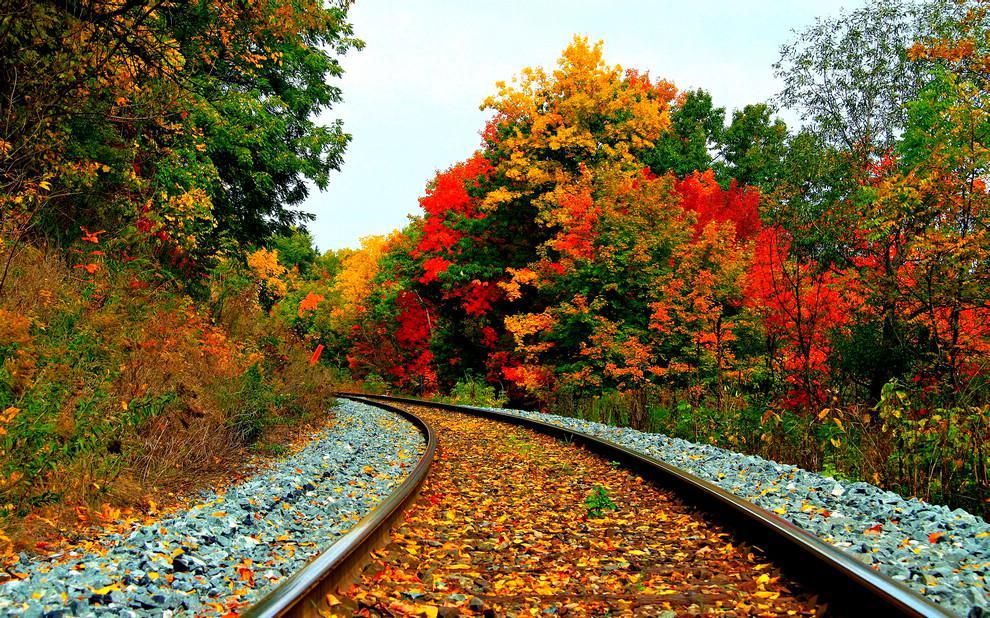 Осень - то время года, когда люди должны согревать друг друга своими словами, своими чувствами, своими губами... И тогда никакие холода не будут страшны... Я желаю вам осень полную любви, тёплых красок, запаха кофе и поцелуев...