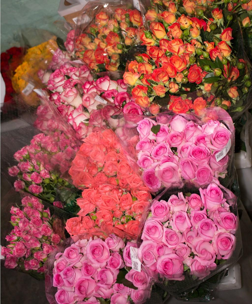 Сбор заказов. Дарите цветы просто так! Впервые на нашем форуме свежесрезанные розы. Цены вас приятно удивят. Выкуп 2