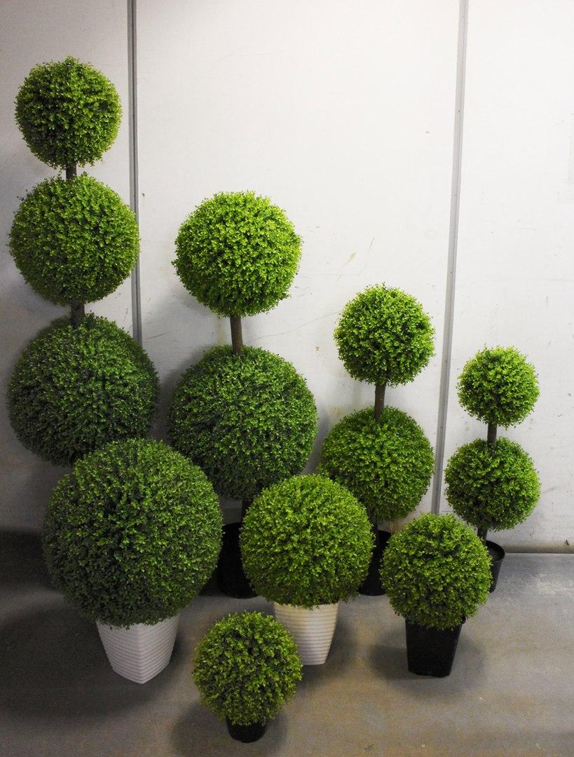 Оформление интерьера изысканными и красивыми растениями! - 16