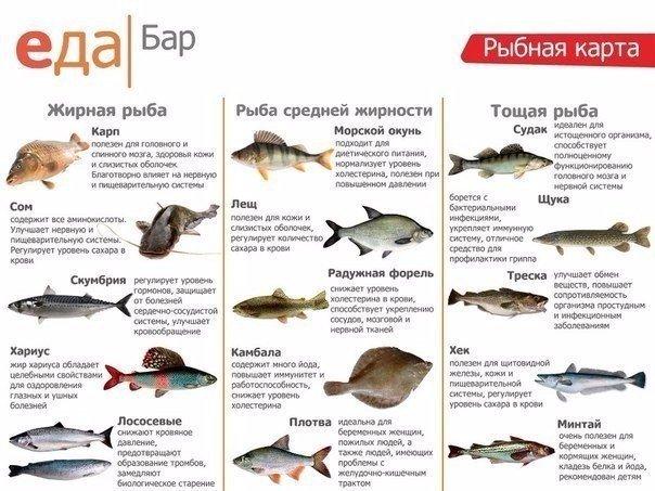 Ты все еще не любишь рыбу
