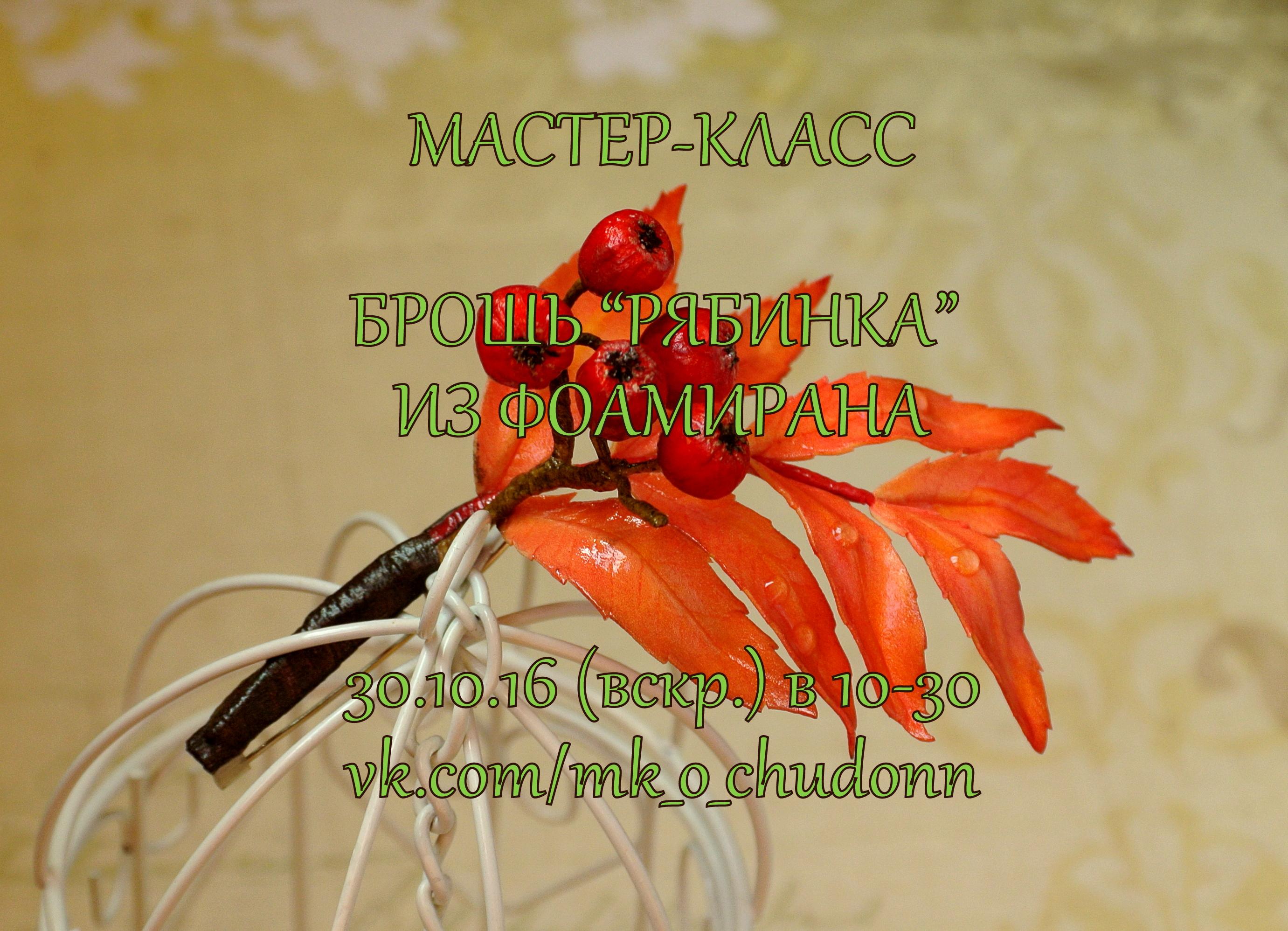 Мастер-класс Брошь-рябинка из фоамирана 30.10.16 в 10-30