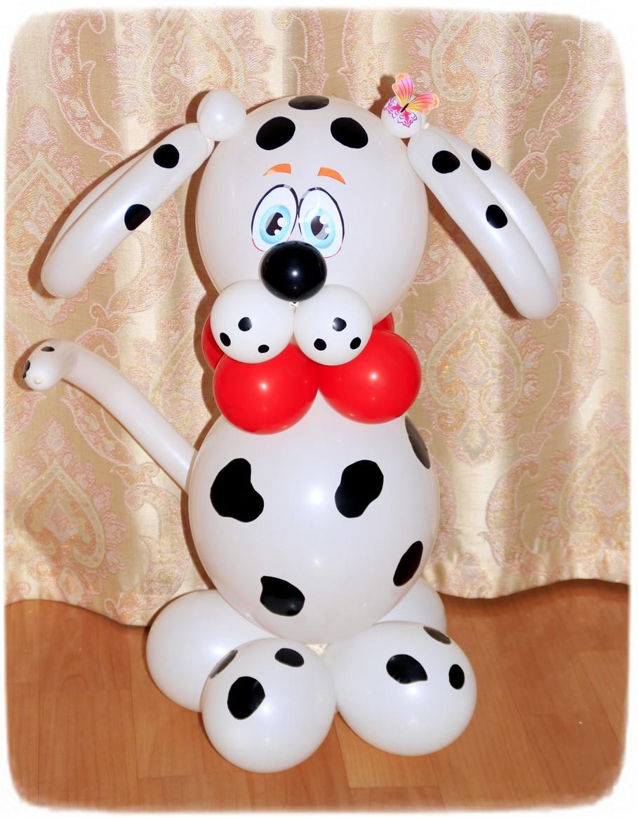 Акция недели на собаку из воздушных шаров!!!!