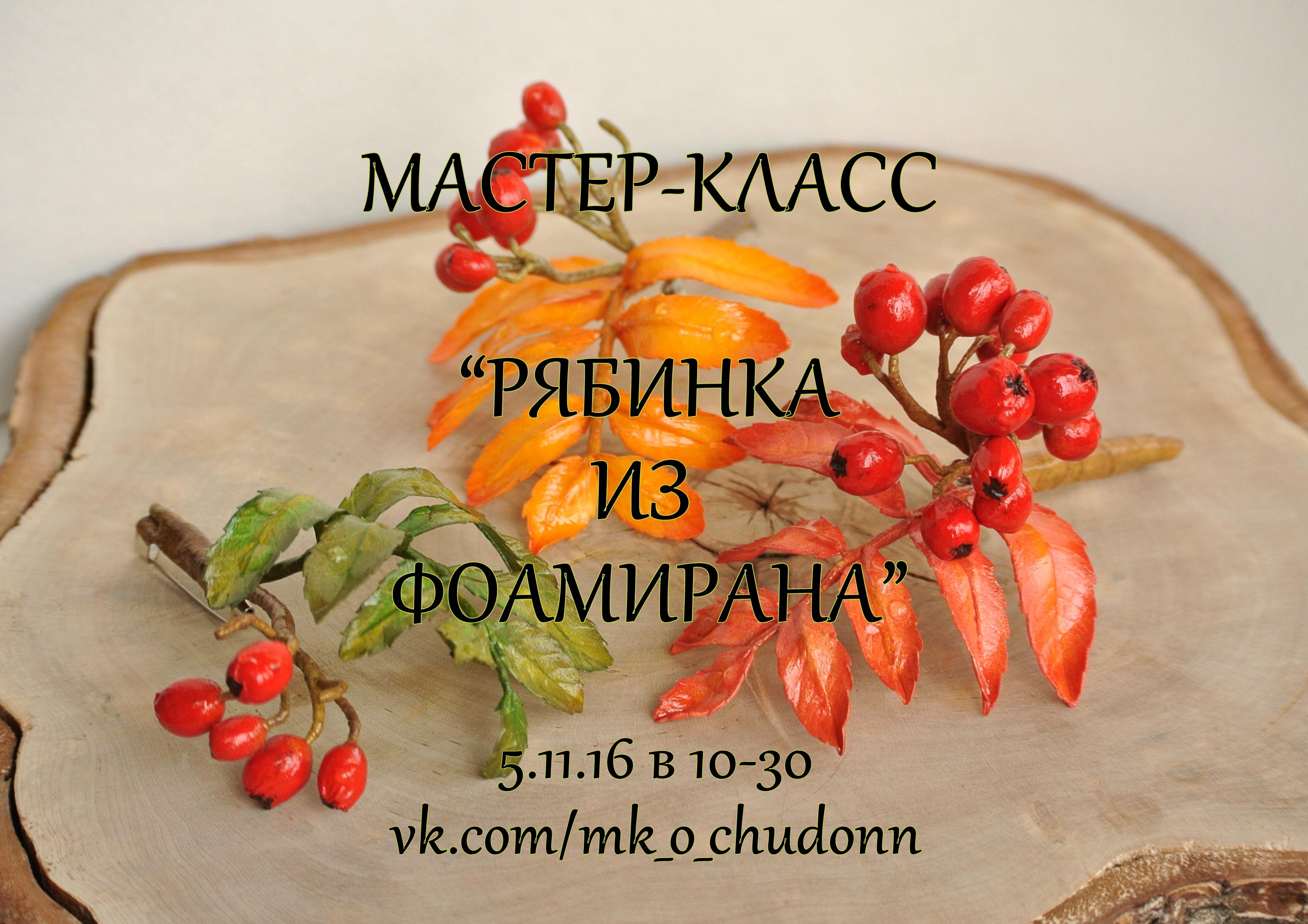5.11.16 МК БРОШЬ-РЯБИНКА ИЗ ФОАМИРАНА! 1 МЕСТО!