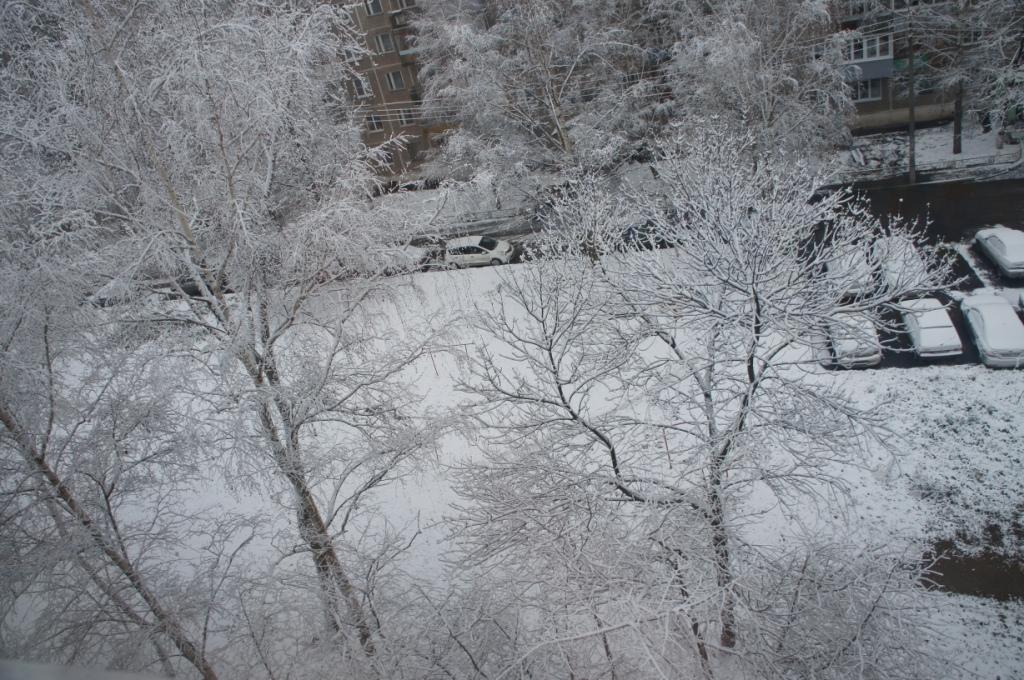 Зима пришла. Красиво как!
