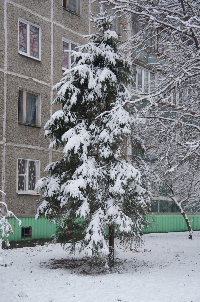 Сегодняшний снег