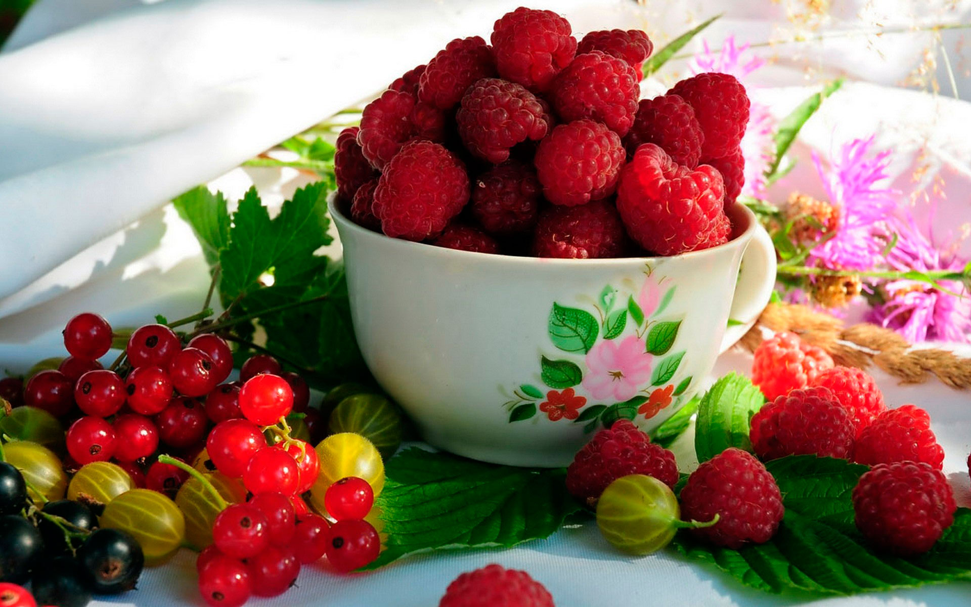 Плодово-ягодные саженцы. Розы, клематисы. предзаказ на весну 2017г