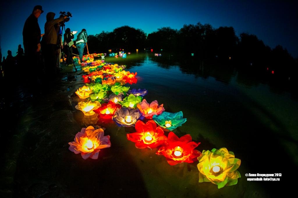 Предзаказ на весну Водные фонарики - лотос