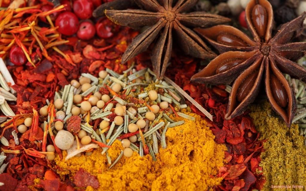 Ощутите частичку волшебной страны Индии на своей кухне. Только лучшие специи.