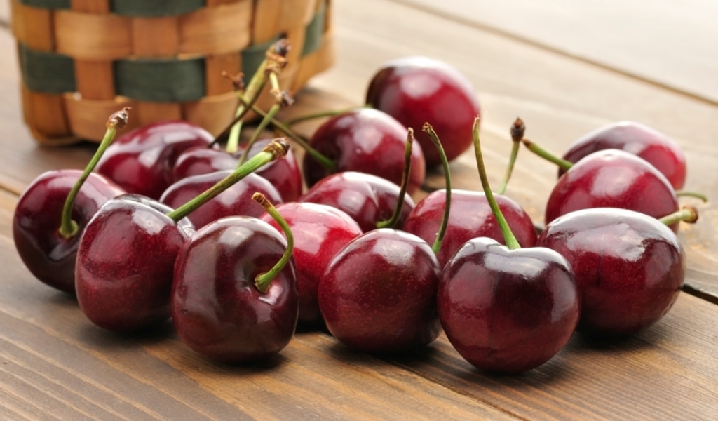 Плодовые деревья (абрикос, груша, вишня, черешня, дюк, яблоня, слива) предзаказ на весну 2017г