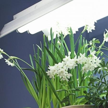 """Светильники для рассады """"3 Урожая"""""""
