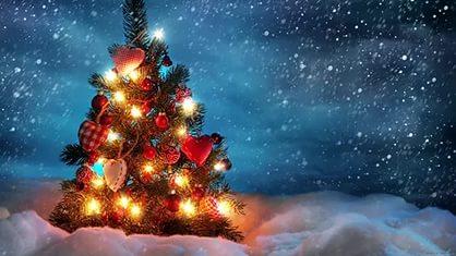 Дорогие мои, участники закупок! Поздравляю всех с Новым годом! Пусть этот год будет тёплым, радостным и благодатным для всех нас!!