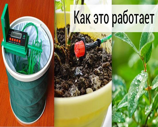 Автономная система полива комнатных растений своими руками 59