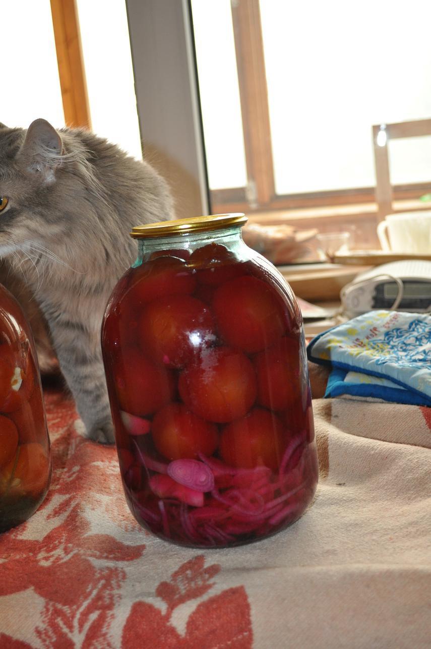 журнал люблю готовить рецепты засолки огурцов с уксусом