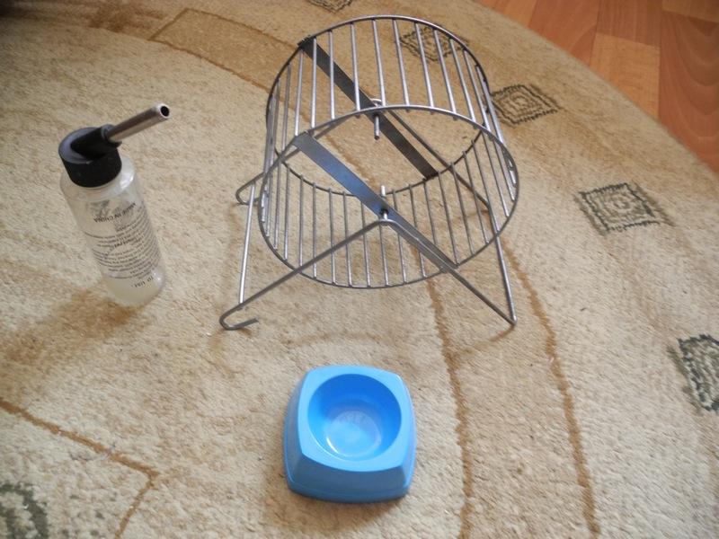 Как сделать колесо для хомяка из дерева своими руками