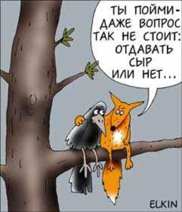 """В Санкт-Петербурге уничтожили 17,5 тонн сыра """"Дорблю"""" и 8,2 тонн """"Маасдама"""", - Россельхознадзор - Цензор.НЕТ 7160"""