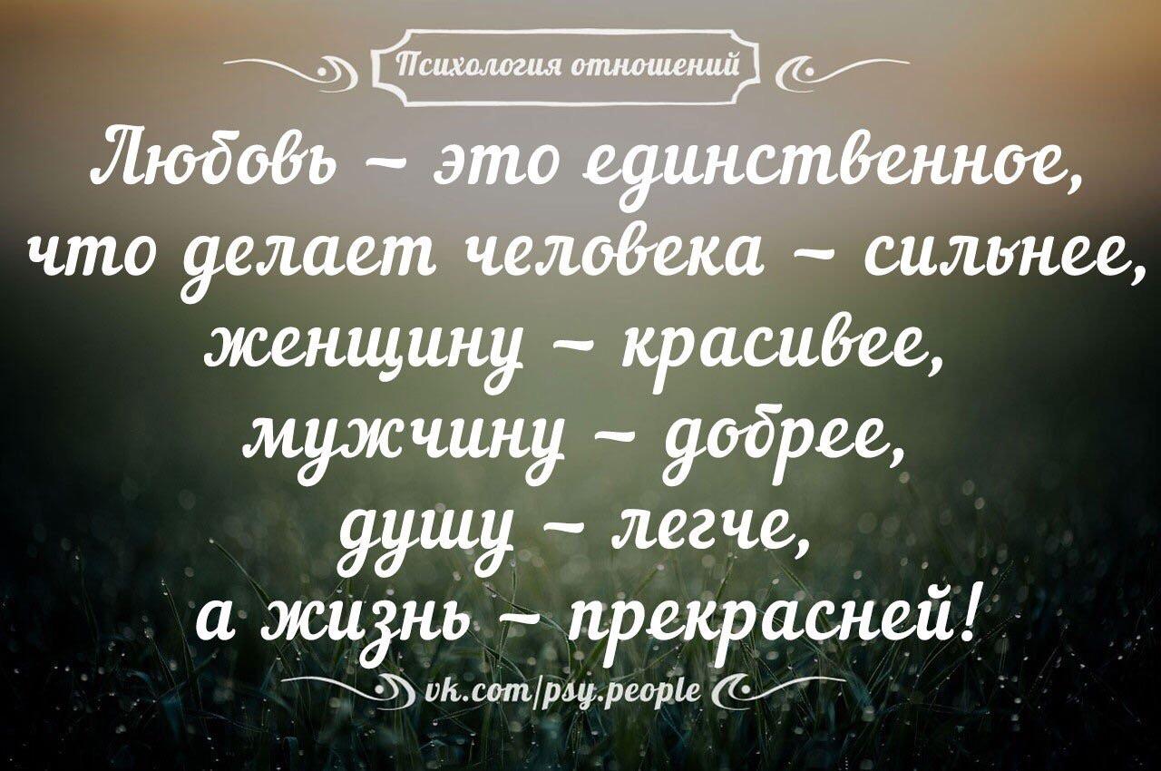 любят поспорить любовь это прекрасное цитаты великих людей узкой кисочки