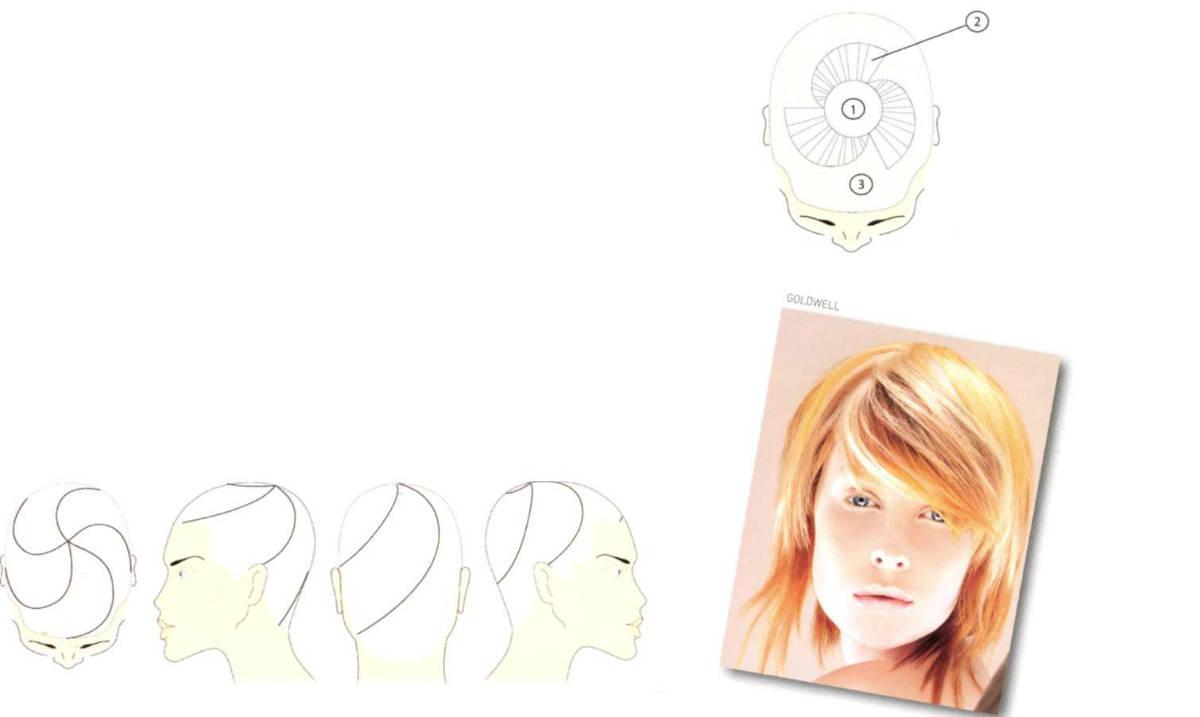Сложное окрашивание волос по схемам