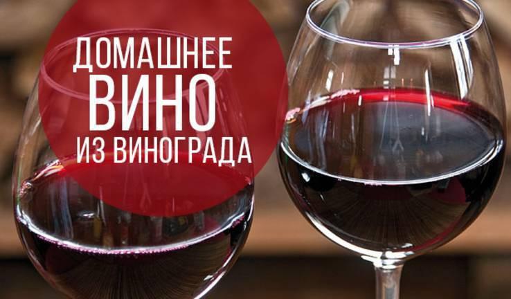 Как сделать в домашних условиях вино с винограда в домашних условиях