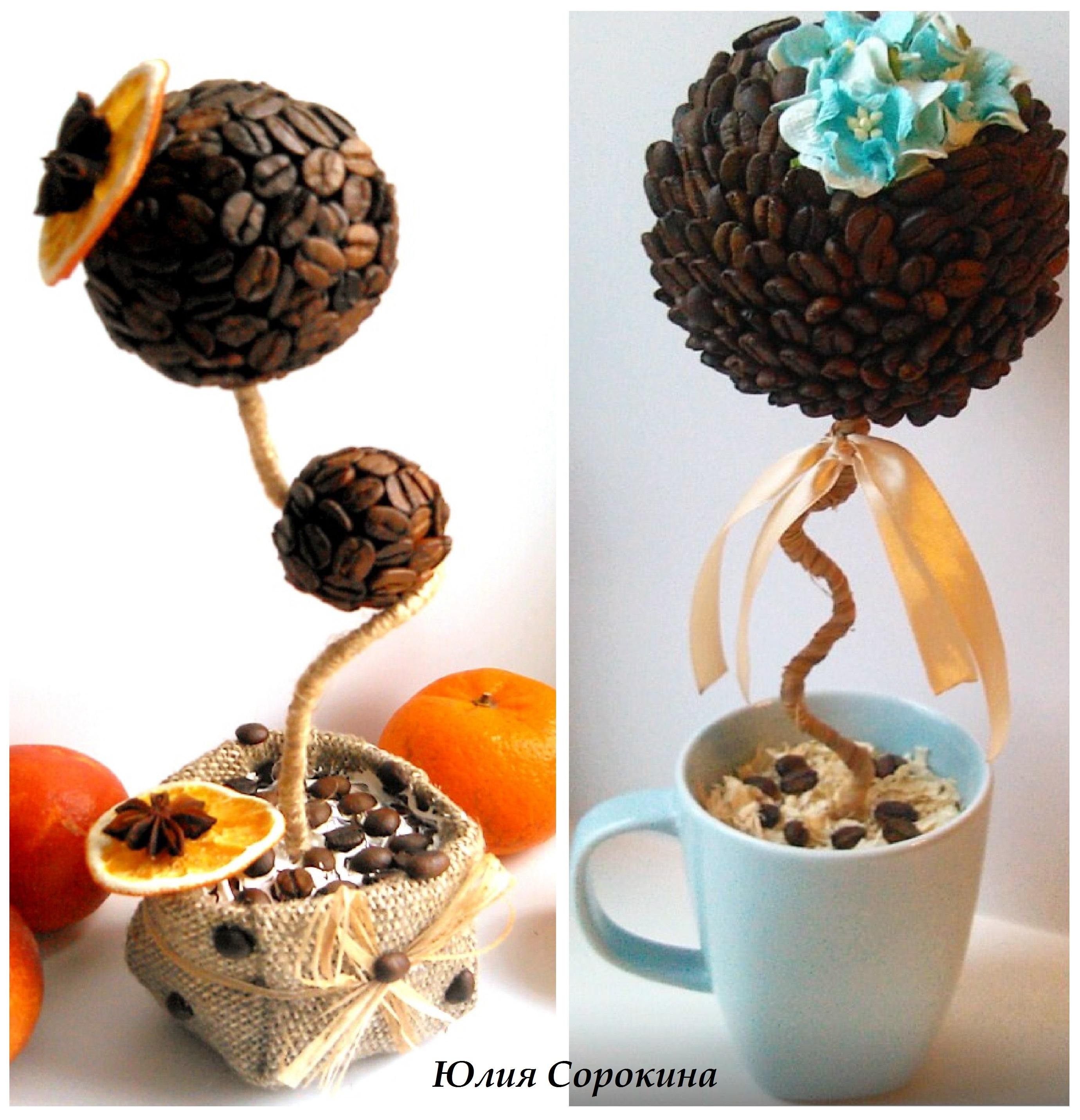 самолете поздравление к подарку кофейное дерево выбрать