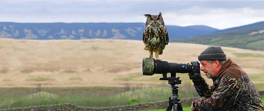 Pictures Showing That Nature Photographers Have The Best Jobs Ever